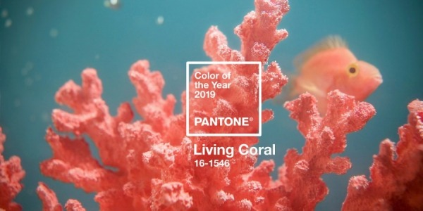Living Coral: Pantone Colour of the Year 2019